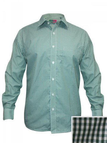 https://static1.cilory.com/157305-thickbox_default/peter-england-green-formal-shirt.jpg