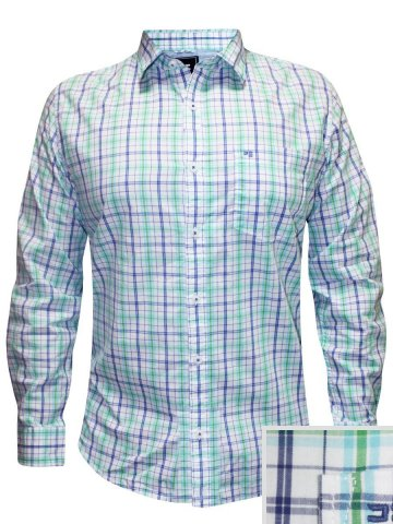 https://static1.cilory.com/173555-thickbox_default/peter-england-light-green-casual-check-shirt.jpg