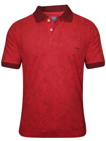 https://d38jde2cfwaolo.cloudfront.net/180996-thickbox_default/turtle-red-printed-polo-t-shirt.jpg