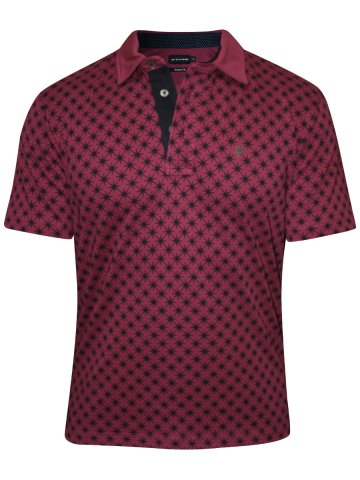 https://static9.cilory.com/209813-thickbox_default/uni-style-images-plum-printed-polo-t-shirt.jpg