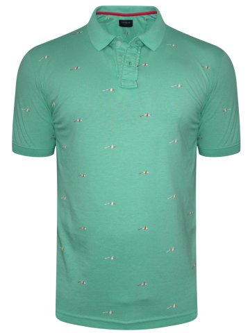 https://static8.cilory.com/318377-thickbox_default/peter-england-sea-green-polo-t-shirt.jpg
