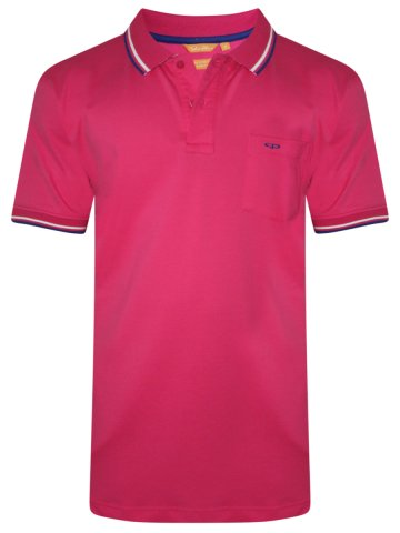 https://static.cilory.com/318592-thickbox_default/colorplus-monet-pink-tipping-polo-t-shirt-with-pocket.jpg