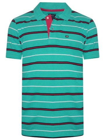 https://static6.cilory.com/346627-thickbox_default/arrow-green-polo-stripes-t-shirt.jpg